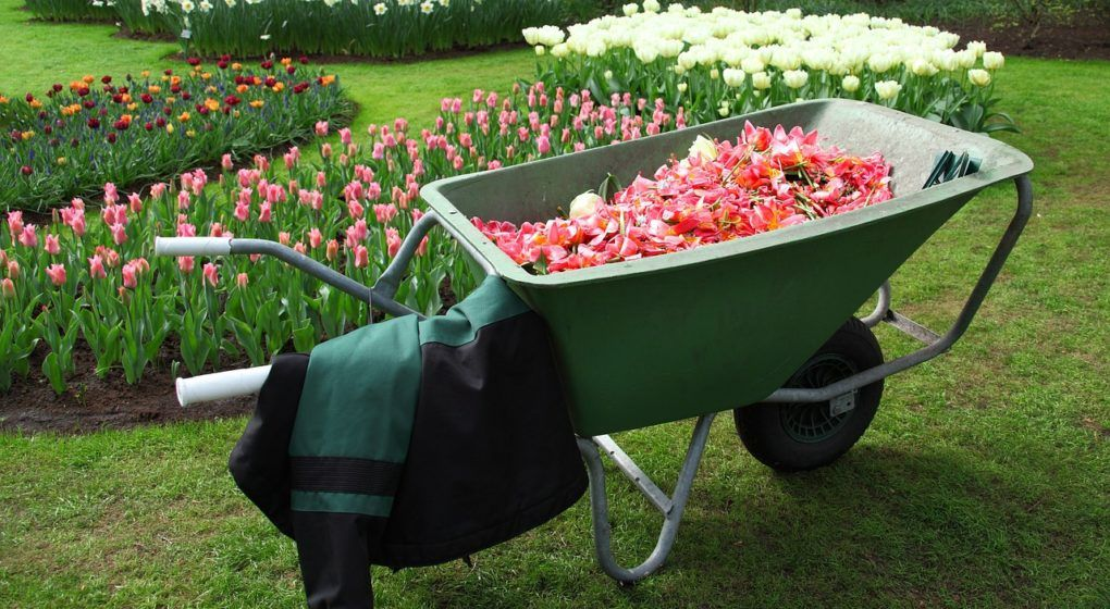 useful tools for the lawn and garden