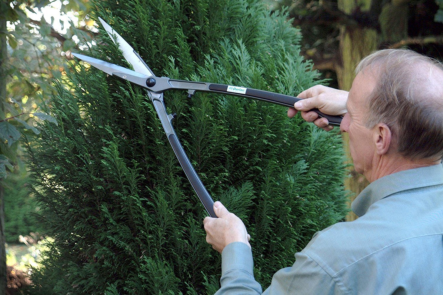 Best Hand Grass And Hedge Shears Uk Reviews 2019