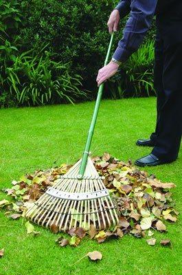 buying a garden rake