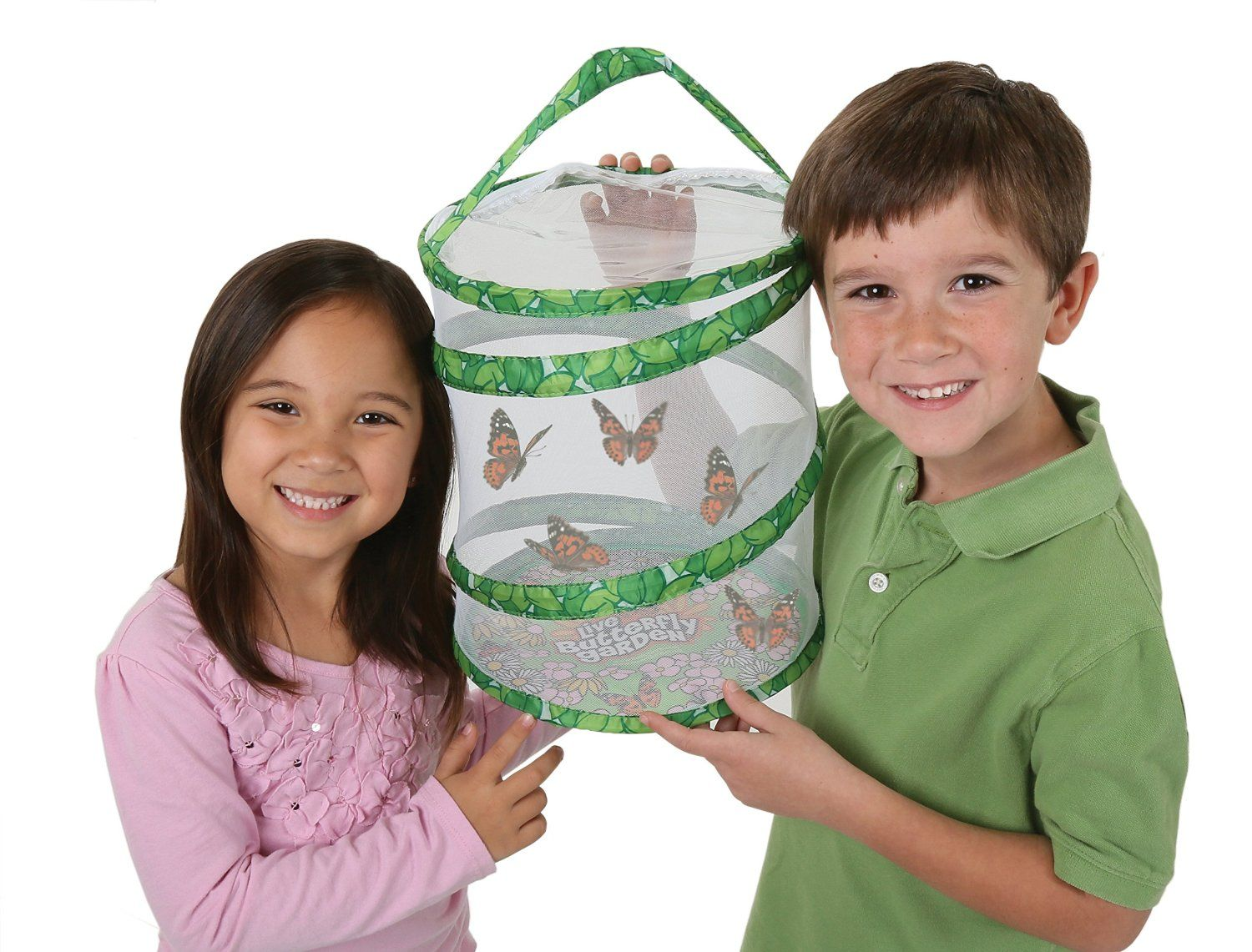 butterfly kits for kids
