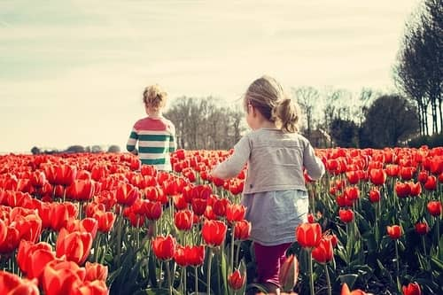 Benefits of Gardening for Kids