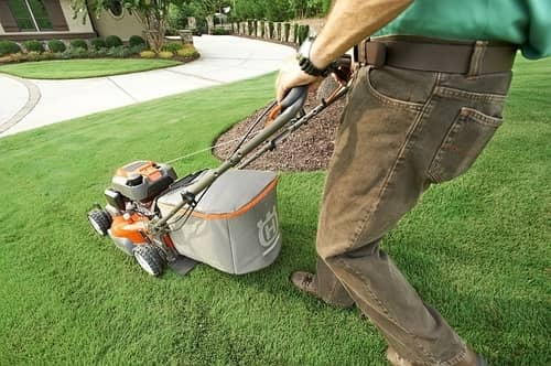 best lawnmower UK reviews