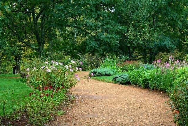 plan a garden path