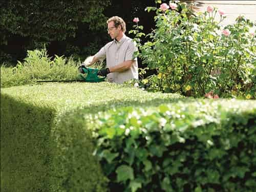 electric hedge trimmer buying guide