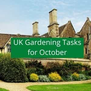 gardening jobs to do in October