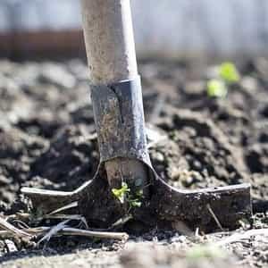 traditional garden spade