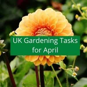 gardening jobs for april