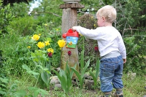 gardening science for kids