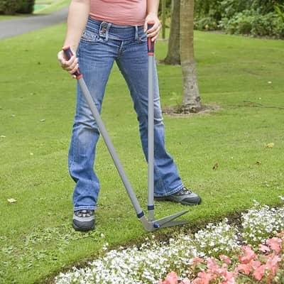 lawn edging shears (long handles)
